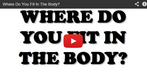 The Body Promo Video
