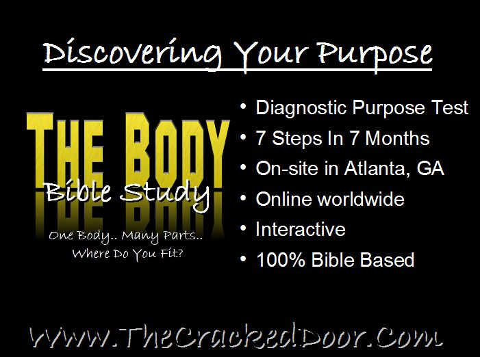 The Body Has Officially Launched!!